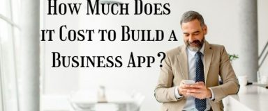 How Much Does it Cost to Build a Business App?