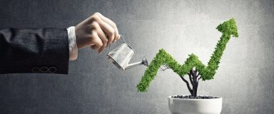 Growth Potential and Opportunity for a Small Business
